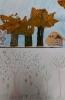 Drugie życie drzewa - konkurs Magurskiego Parku Narodowego